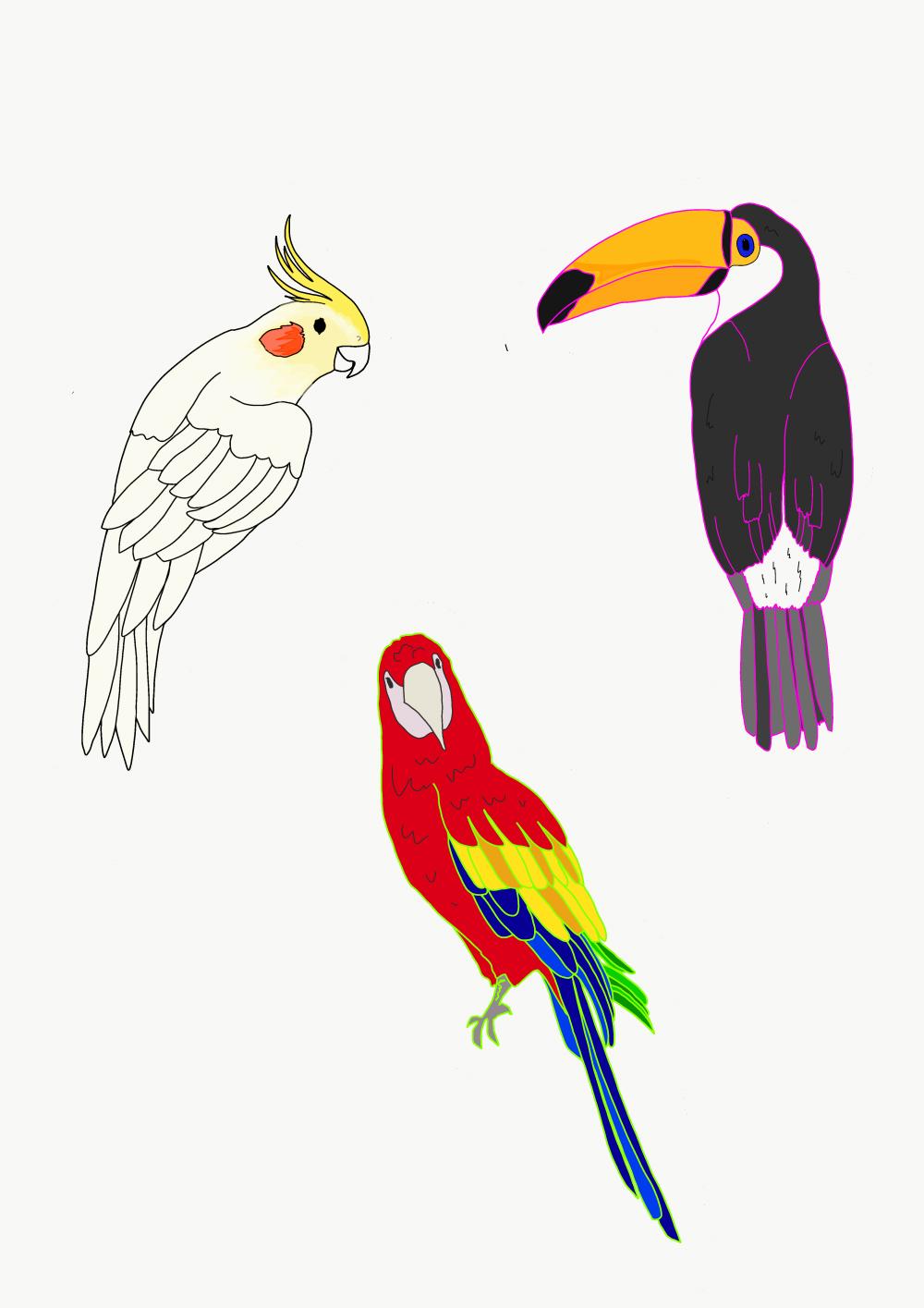 刺繍のデザイン